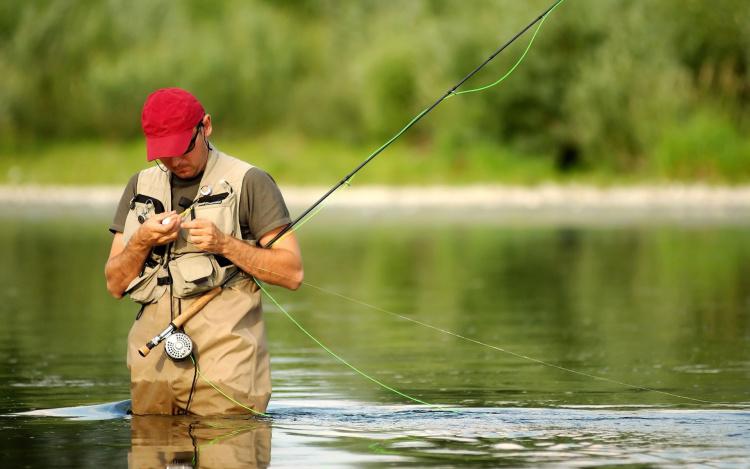 Рибальський календар MP-Fish